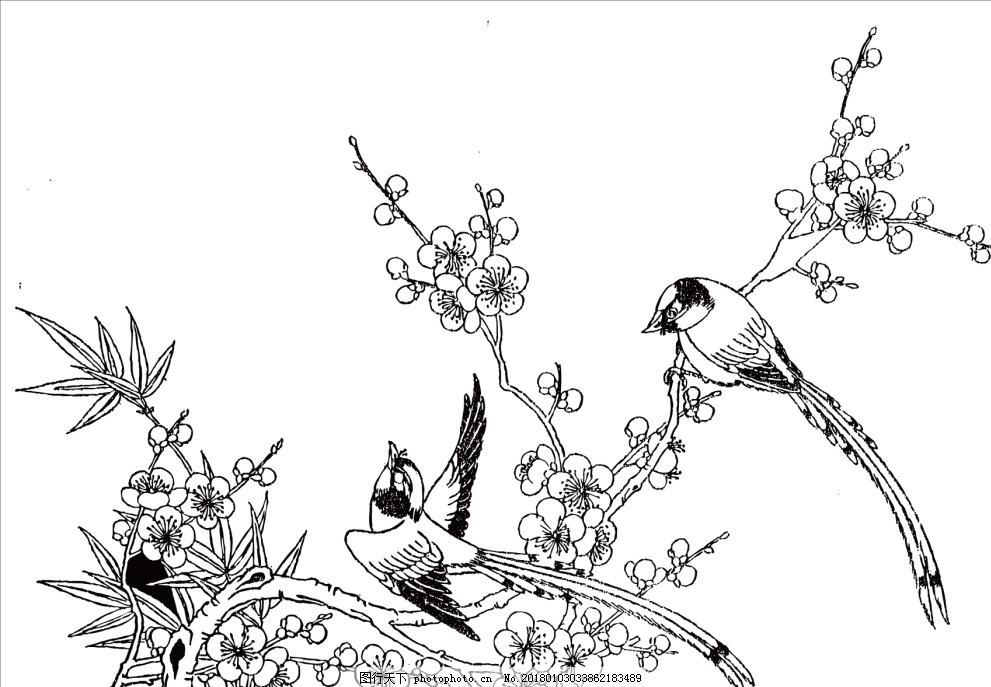 矢量图喜鹊桃花 矢量线稿 白描 图片素材