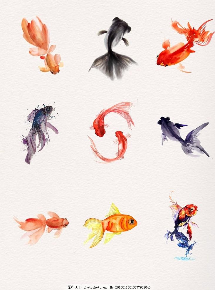 鱼 水墨鱼 水墨画 中国风水墨鱼 水墨鱼素材 水墨锦鲤 水墨鱼背景 水