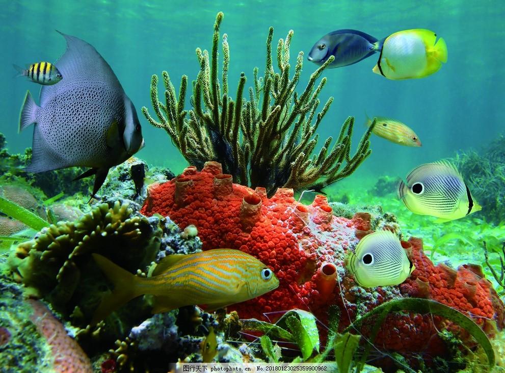 海洋生物海底世界 海洋馆 卡通海底世界 软膜天花 卡布灯箱