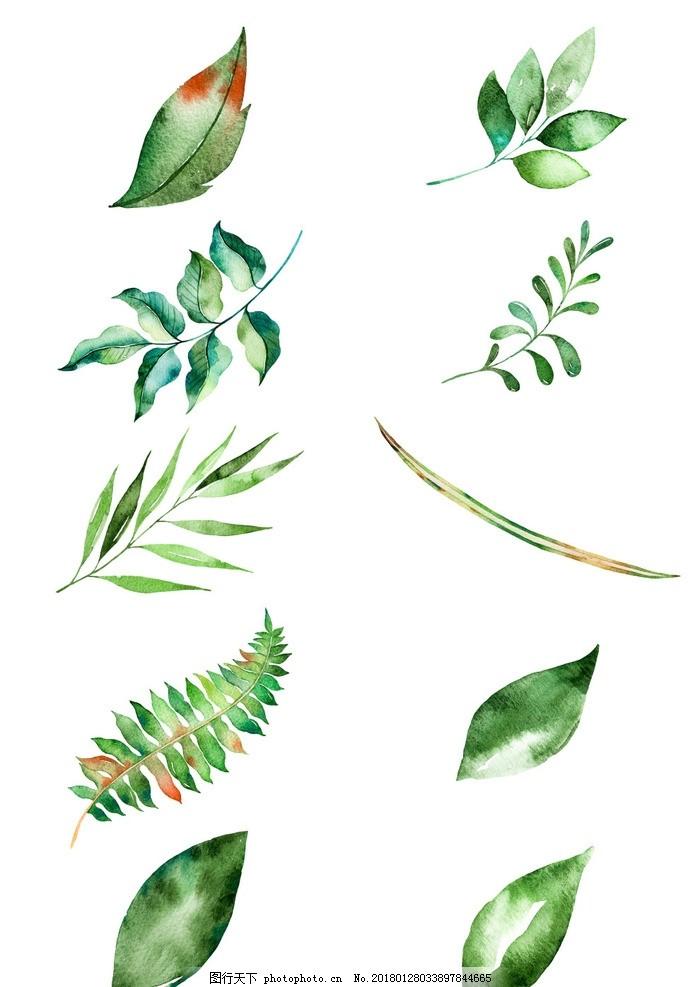 其他 其他图片素材  小清新水彩树叶图组 柳树水墨画 柳枝 柳条 河边
