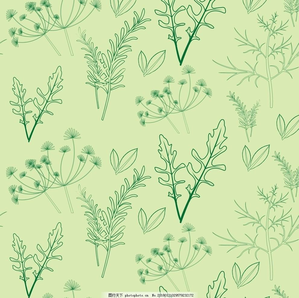 中草药 树叶纹理 植物线描 叶子线描 矢量叶子 矢量中草药