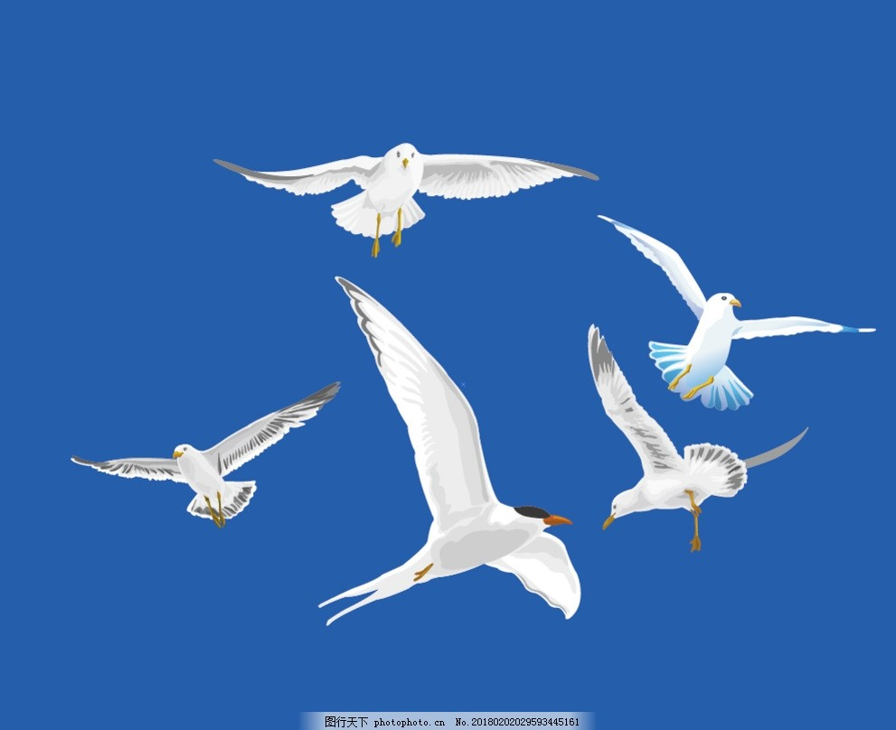 海鸥 海洋 白色 飞翔 展翅 海报 矢量 素材 海鸥剪影 矢量海鸥 设计