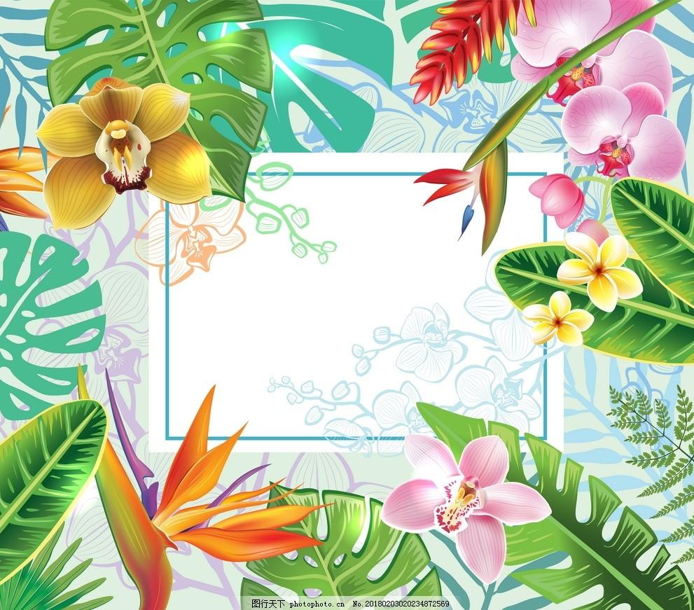 底纹边框 背景底纹  热带植物花 花横幅 植物花 花背景 卡片 手绘植物