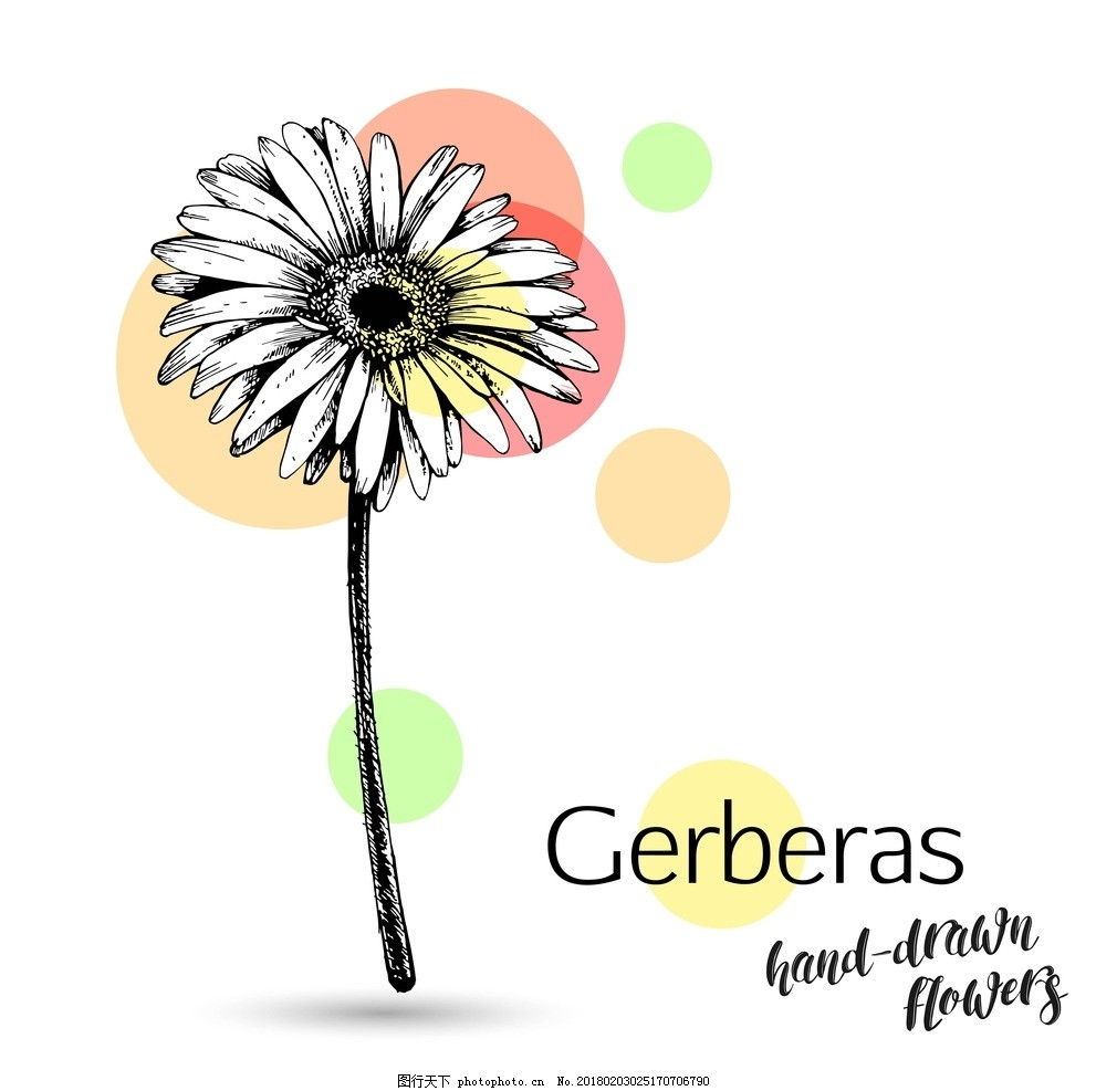 手绘花 花卉 鼠绘花 植物花 线条花 手绘线条花 花线条 彩绘花